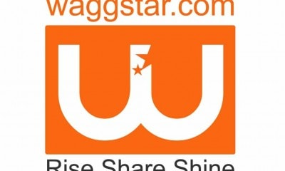 waggstar logo final