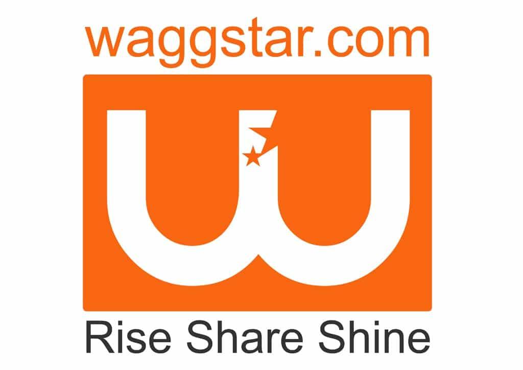 waggstar logo final
