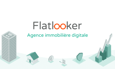 flatlooker illu2 e1571253818667