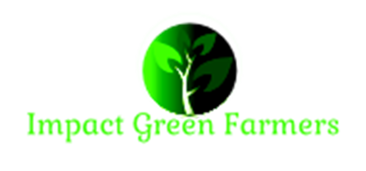 Impact Green Farmers : growing food with Aquaponics