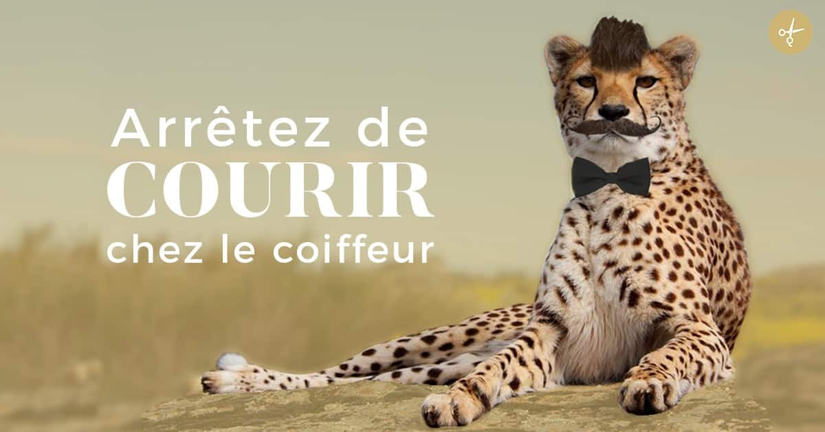 cheetaah 1