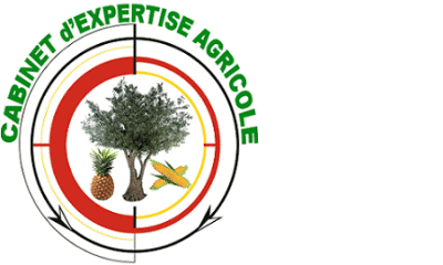 cabinet d expertise agricole