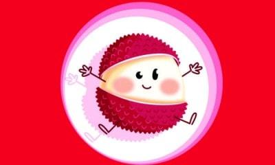 LitchiVideo Logo e1501344410353