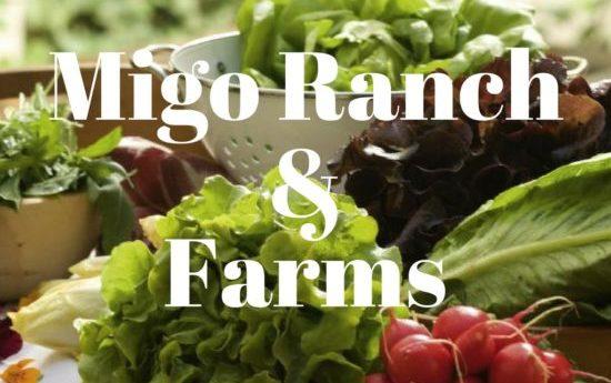 Migo Ranch 1 e1512037175316