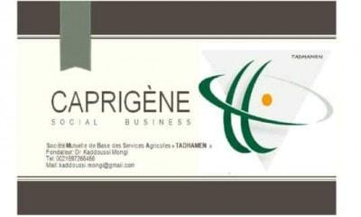 logo word 1 e1512684931486