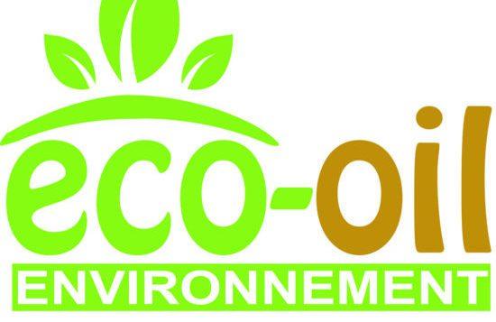 النفايات البلاستيكية إلى بترول في المغرب carburant ecologique e1512667751126