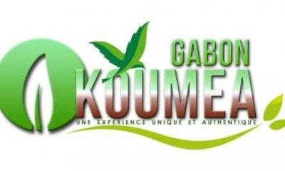 logo31 e1512989038724