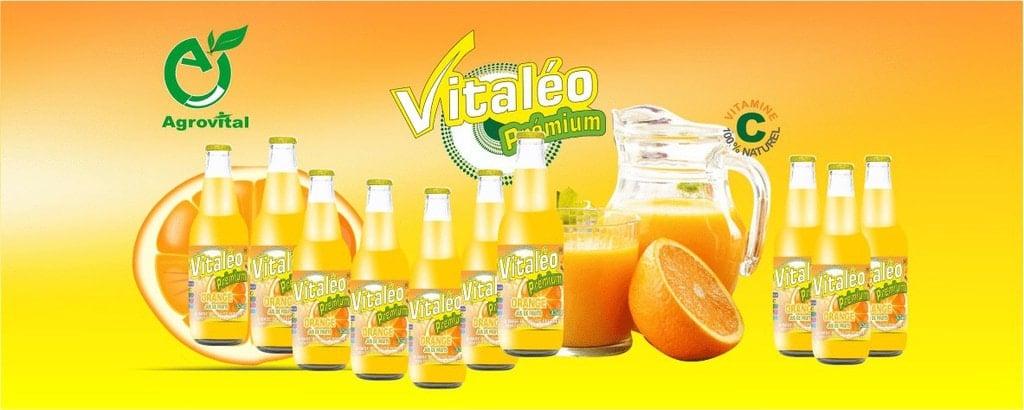 Packaging FDP Agrovital Biosud Foods 8a4