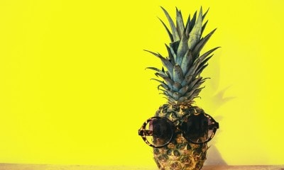 green pineapple fruit with brown framed sunglasses beside 1161547