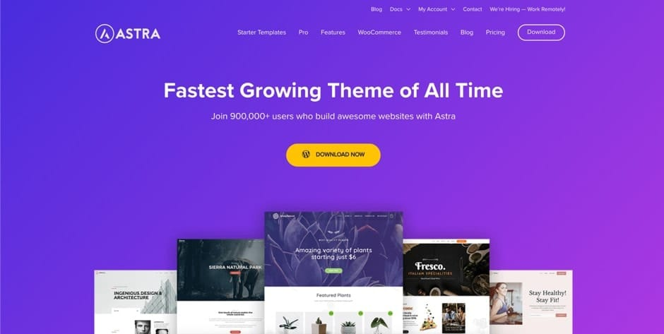 the best and most popular wordpress theme