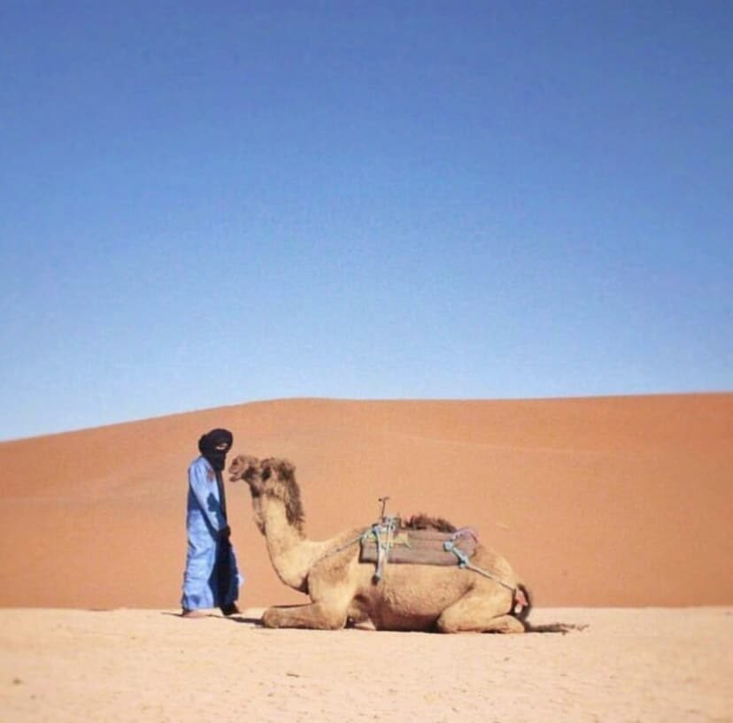 PRIVATE DESERT TOURS trips