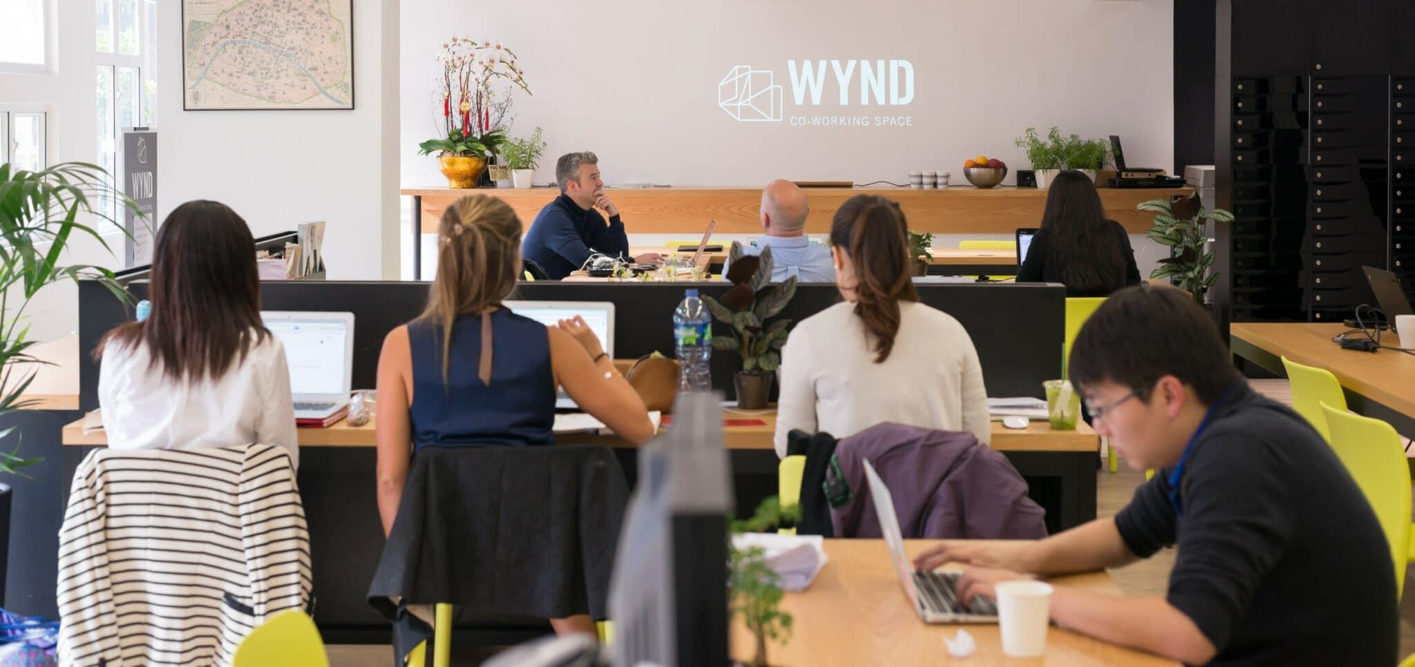 Wynd Team