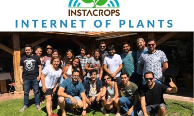 Instacrops Team