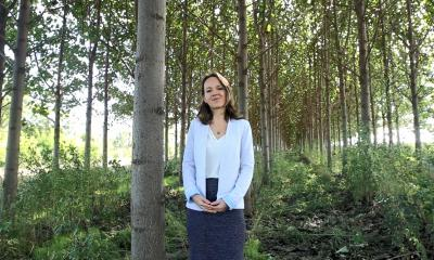 Iwa Pawlak SMART FOREST