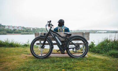moped style e-bike