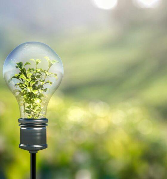 rachat electricite verte