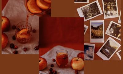 conseils ete automne